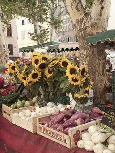 Il meglio della Provenza | Aix en Provence- 24 Luglio 2011 | Flickr