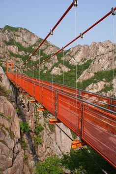Cloud bridge (구름다리), Wolchulsan National Park, Korea  by Rob, via Flickr