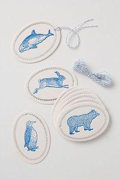 arctic animal tags