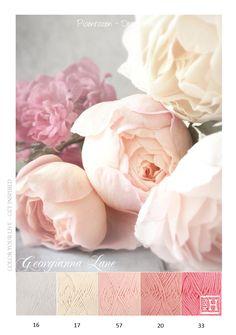 Kleurinspiratie - Pioenrozen in pastel tinten. Haakgaren Drops Paris