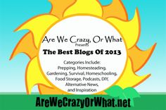 The Best Blogs of 2013~AreWeCrazyOrWhat.net