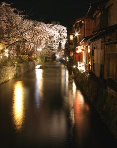 祇園 京都 Cherry blossoms on Takase River, Kyoto, Japan Geisha, Oh The Places You'll Go, Places To Visit, Japan Landscape, Sakura, Kyoto Japan, Japanese Culture, Japan Travel, Land Scape