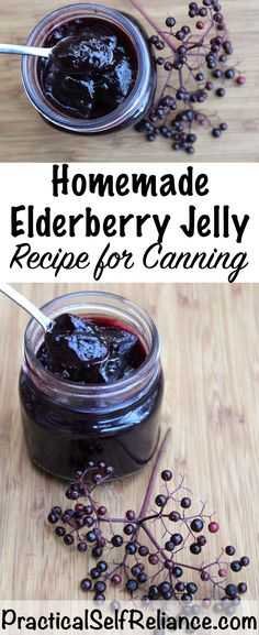 Elderberry Jelly Recipe for Canning ~ homemade elderberry jelly is easy to make with fresh or dried elderberries. Nothing like eating your medicine on your morning toast. Perfect for even the most reluctant patient! Elderberry Jelly Recipe, Elderberry Juice, Elderberry Ideas, Herbal Jelly Recipe, Elderberry Cuttings, Elderberry Growing, Jelly Recipes, Jam Recipes, Canning Recipes