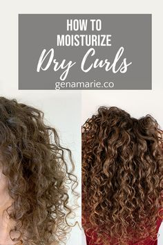 How to Moisturize Dry Curls & Refresh ft. TreLuxe BLACK FRIDAY SALE