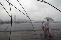 Rainy day in Yokohama, Hidaya Watanabe