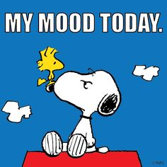 My mood today.