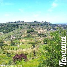 Toscana - sempre bellissima! ORIGINS ITALY www.originsitaly.com #originsitaly #italy #italia #italian #toscana #tuscany #siena #chiusi #countryside #landscape #genealogy #genealogy #familyhistory #beauty #instatoscana #travel #viaggio #heritage #culture #roots #italianamerican #history #family #panorama #nonni #storia