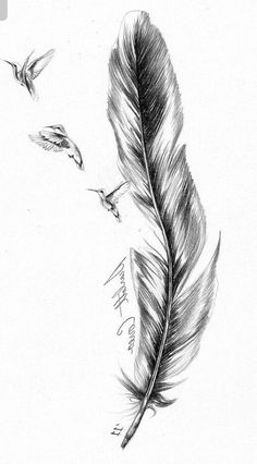 - Thinks Tatto Feather Tattoo Design, Feather Tattoos, Wrist Tattoos, Body Art Tattoos, Small Tattoos, Tatoos, Schulter Tattoo, Bild Tattoos, Hummingbird Tattoo