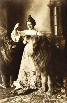"Claire Heliot, Lion Tamer. ""Claire Heliot and her 12 Lions"" In 1907, she was very seriously injured by one of her lions, ending her career."