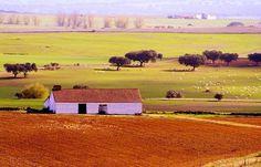 Portugal está entre os 10 países mais bonitos do mundo. Quem o afirma é o portal internacional UCity Guides, que disponibiliza aos turistas tudo o que precisam de saber antes de viajar para determinada cidade e que escolheu o