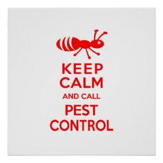 Keep Calm and Call Pest Control Funny Exterminator Posters