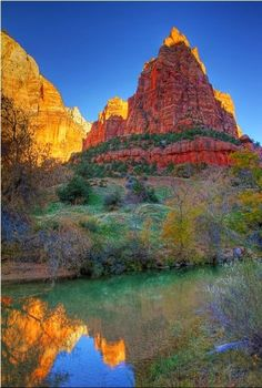 reflections - Zion National Park