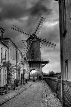 Windmill at Wijk bij Duurstede
