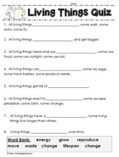 Attrayant How Much Do You Know About Living Things? A Grade 1 Quiz About Living  Things.