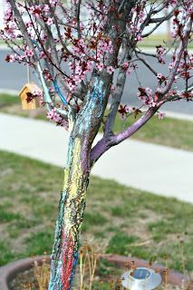 Lovely and safe, this tree is colored with wet chalk, as I learned in my Humanities class that  it indeed lasts longer that way. I would also recommend spraying a light layer of aerosol hairspray once you finish decorating the tree trunk. Then the color will last a few days, even If (and most likely will) rain. Good luck!