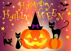 Images with a quote are the best style of celebration that's why we here with best ideas of halloween 2019 images collection. If you finding halloween image Halloween Chat Noir, Photo Halloween, Happy Halloween Pictures, Fröhliches Halloween, Halloween Wishes, Halloween Greetings, Halloween Images, Cute Halloween Costumes, Halloween Quotes