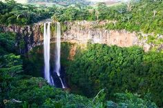 Блэк-Ривер-Горжес – #Маврикий (#MU) Номинант на включение в список Всемирного наследия ЮНЕСКО. http://ru.esosedi.org/MU/places/1000144263/blyek_river_gorzhes/