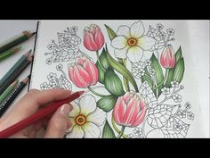 HOW I COLOR AN APPLE | Blomstermandala Coloring Book | Coloring With Colored Pencils - YouTube