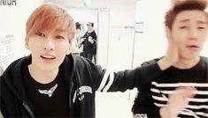 camerahappy hyukjae~ O(≧▽≦)O OMYAIGOO I miss them. >.< when will a comeback come? {GIF}