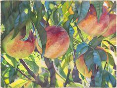 "Fruit @ Life in Full Color - 22""x30"" - November 2007 - Tropical Peaches - Cara Brown"