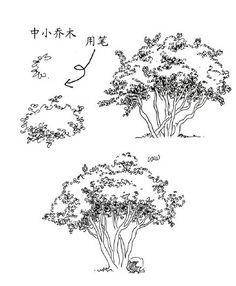 零基础该如何学习风景写生呢? 绘画人
