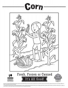 Corn Coloring Pages | Food Hero | Healthy vegetable coloring sheets for kids. Kids love this. Free and printable