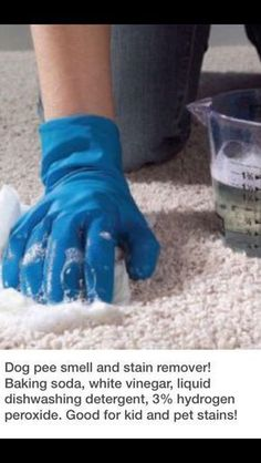 Dog pee stain and smell remover Just in case. Household Cleaning Tips, Cleaning Recipes, House Cleaning Tips, Deep Cleaning, Spring Cleaning, Cleaning Hacks, Cleaning Supplies, Cleaning Spray, Household Products