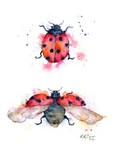 Ladybug Illustration - Ladybird Illustration - Watercolor print by MilkandHoneybread on Etsy