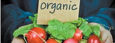 The term organic has exploded in the last decade in our privileged and health-conscious first world state. In fact, the global organic industry is now a Food Safety, Corn Syrup, Organic Recipes, Climate Change, Watermelon, Fruit, Eat, Food Security, Organic Dinner Recipes