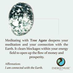 * Tree Agate