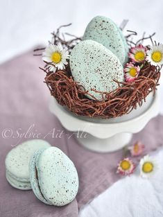 Easter Dessert - Amuse Mouth - About Easter - Gateau About Easter, Macarons, Eggs, Desserts, Recipes, Html, Food, Surprise Cake, Rice Noodles