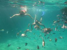 Snorkel en Lagoa Azul