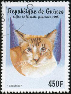 Republic of Guinea 1998 Cat Stamps