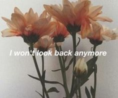 I won't look back anymore.