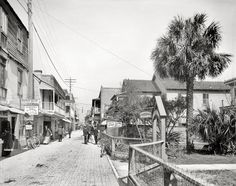 "St. Augustine, Florida, circa 1908. ""St. George Street."" Where ice cream cones and gun-trunk-umbrella-sewing machine repairs are just a few steps apart."