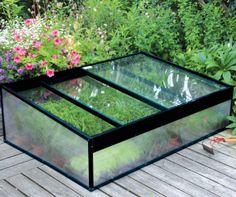 Tuinieren onder glas: tips voor je moestuin.