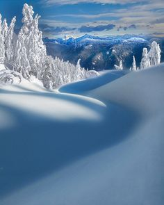 Snow landscape with mountains - Beautiful nature images, flower photos, animal pictures, landscape photographs. Amazing nature photography. By David Sorensen, digital nature photographer.