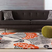 Thinking of adding an area rug or two? Remember the practical function of a proper area rug!