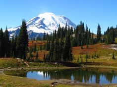 Tipsoo Lake Reflects Mt. Rainier, Washington, USA...