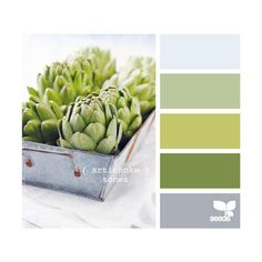 @Terri White  A Fresh Take on Fall Colors Inspiration Boards from Design Seeds! Check out all of Design Seeds Color Inspirations! I'm really digging this grey & green!!! For me or you!