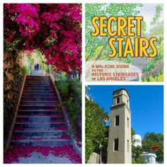 Secret Stairs of Los Angeles