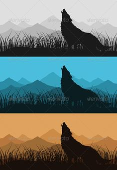 Realistic Graphic DOWNLOAD (.ai, .psd) :: http://jquery.re/pinterest-itmid-1000546799i.html ... Wolf in mountains2 ...  animal, dog, fauna, grass, hill, howling, hunt, illustration, image, natural, nature, night, predator, scene, silhouette, sky, solitude, sunset, symbol, tooth, tranquil, vector, wild, wolf, wood  ... Realistic Photo Graphic Print Obejct Business Web Elements Illustration Design Templates ... DOWNLOAD :: http://jquery.re/pinterest-itmid-1000546799i.html