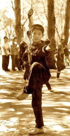 381244107 Jet Li, Kung Fu Martial Arts, Martial Arts Movies, Chinese Martial Arts,