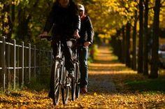 Bild zu Radfahren im Alltag