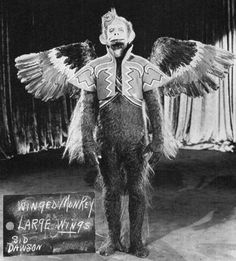 """the-owls-are-not-what-they-seem: """" A costume test picture for the flying monkey costumes from The Wizard of Oz. Flying Monkey Costume, Monkey Costumes, Margaret Hamilton, Scared Of Flying, Fear Of Flying, Katharine Hepburn, Winged Monkeys, Rock And Roll, Que Horror"""