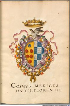 Cosimo I av Medici Architectural Sculpture, Renaissance Paintings, Family Crest, Crests, Coat Of Arms, Banner, Illustration, Medieval, Folk