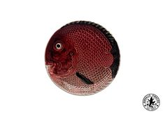 """""""Fish"""" Collection 