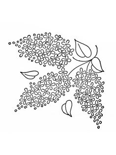 Printable Flower Coloring Pages, Coloring Book Pages, Coloring Pages For Kids, Syringa Vulgaris, Line Artwork, Book Cafe, Kids Story Books, Online Coloring, Future Tattoos