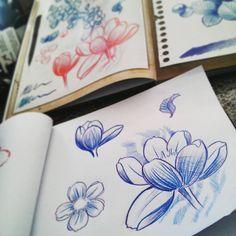 cerejeira tumblr - Pesquisa Google
