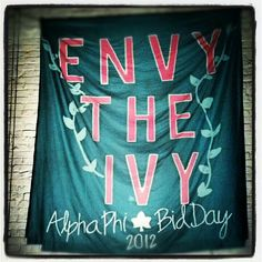 Alpha Phi Nu Chapter Banner!!! This day changed my life. AΦ <3